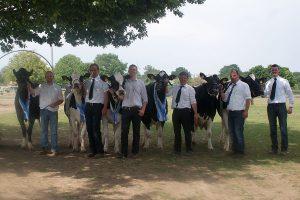WFG-Tierzuchtberatung-Rinderhaltung